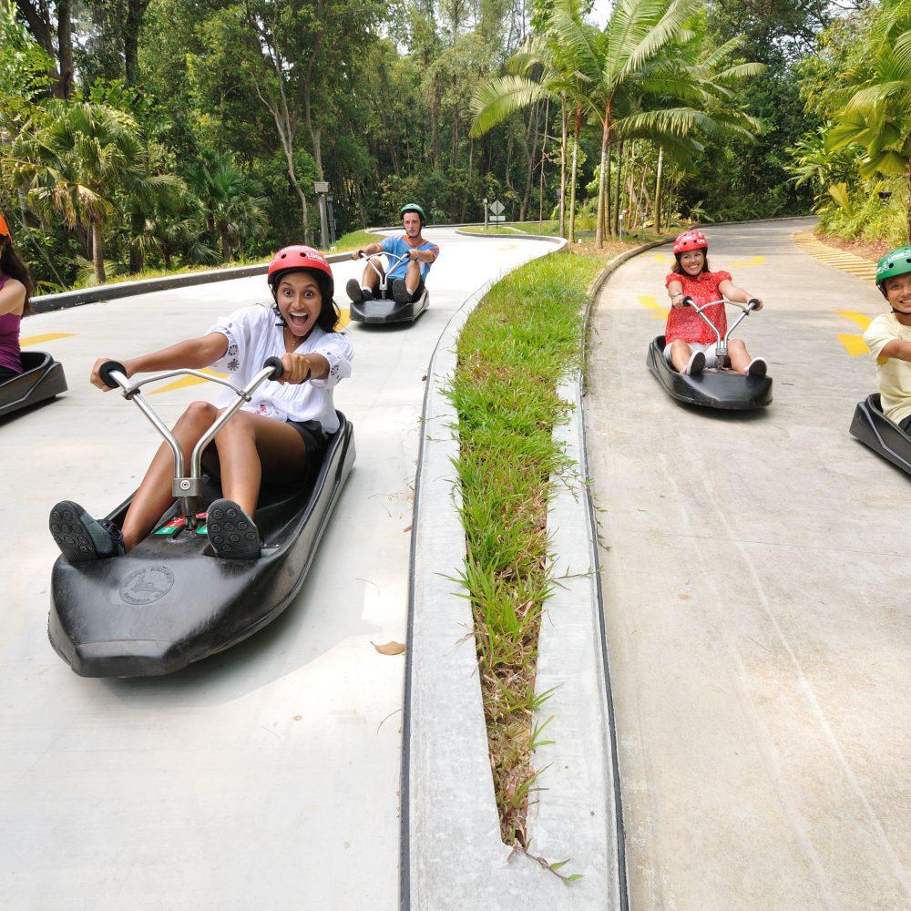 luge skyride singapore
